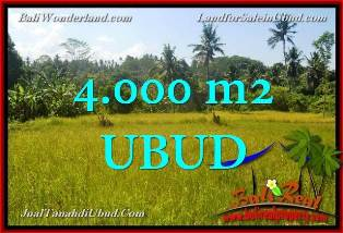 Beautiful PROPERTY LAND SALE IN UBUD TJUB661