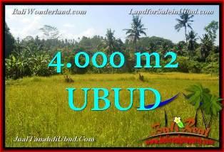 Beautiful UBUD 4,000 m2 LAND FOR SALE TJUB661