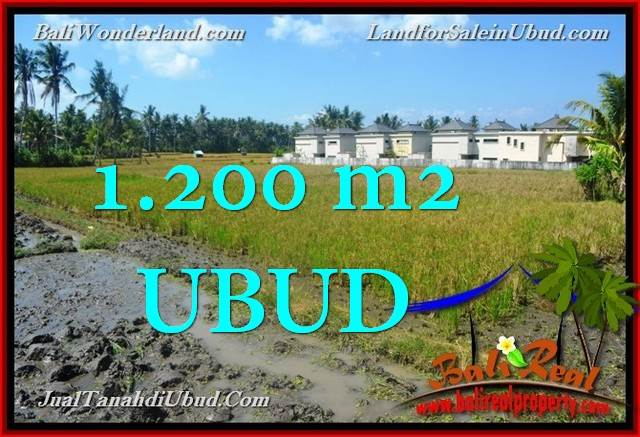 Affordable PROPERTY LAND IN UBUD FOR SALE TJUB663