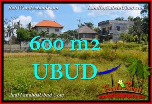 Exotic PROPERTY 600 m2 LAND SALE IN UBUD BALI TJUB664
