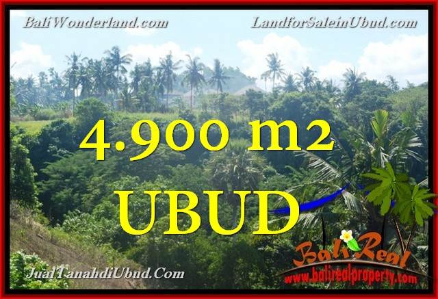 Exotic PROPERTY UBUD LAND FOR SALE TJUB665