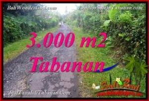 Magnificent PROPERTY Tabanan Selemadeg BALI 3,000 m2 LAND FOR SALE TJTB366