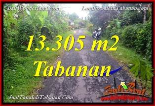 FOR SALE Magnificent 13,305 m2 LAND IN Tabanan Selemadeg BALI TJTB367
