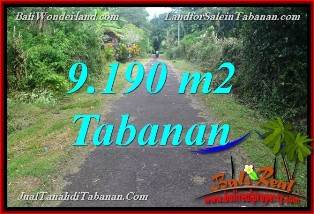 Beautiful PROPERTY 9,190 m2 LAND FOR SALE IN TABANAN Selemadeg BALI