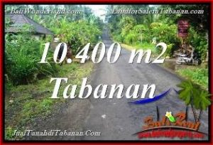 FOR SALE Magnificent PROPERTY 10,400 m2 LAND IN TABANAN TJTB369