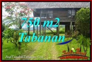 Magnificent PROPERTY Tabanan Bedugul BALI 750 m2 LAND FOR SALE TJTB370