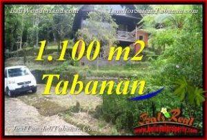 Magnificent PROPERTY Tabanan Bedugul BALI 1,100 m2 LAND FOR SALE TJTB371