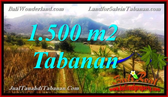 Magnificent PROPERTY LAND FOR SALE IN TABANAN BALI TJTB373