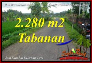 Beautiful PROPERTY 2,280 m2 LAND FOR SALE IN TABANAN BALI TJTB374