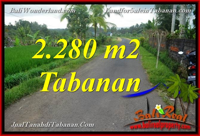 Beautiful PROPERTY 2,280 m2 LAND FOR SALE IN TABANAN BALI TJTB374