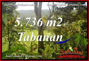 Affordable LAND SALE IN Tabanan Selemadeg BALI TJTB376