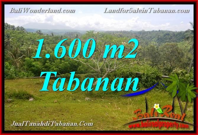 Beautiful PROPERTY LAND IN TABANAN BALI FOR SALE TJTB378