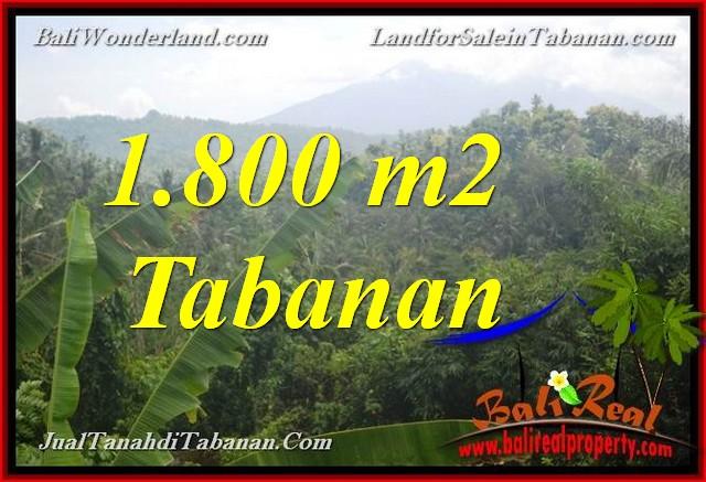 LAND FOR SALE IN TABANAN Selemadeg TJTB379