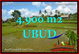 Exotic PROPERTY 49 Ares LAND FOR SALE IN Ubud Pejeng BALI TJUB652