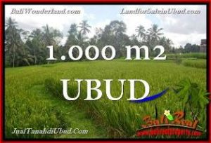 Beautiful PROPERTY Ubud Tegalalang 1,000 m2 LAND FOR SALE TJUB653