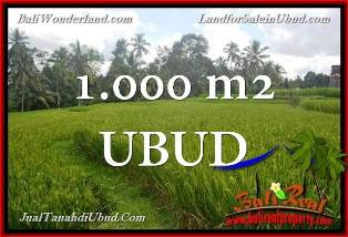FOR SALE Affordable PROPERTY 1,000 m2 LAND IN UBUD BALI TJUB653