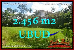 Magnificent 2,456 sqm LAND IN Ubud Tegalalang BALI FOR SALE TJUB654
