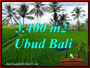 Magnificent PROPERTY 3,400 m2 LAND FOR SALE IN UBUD BALI TJUB656