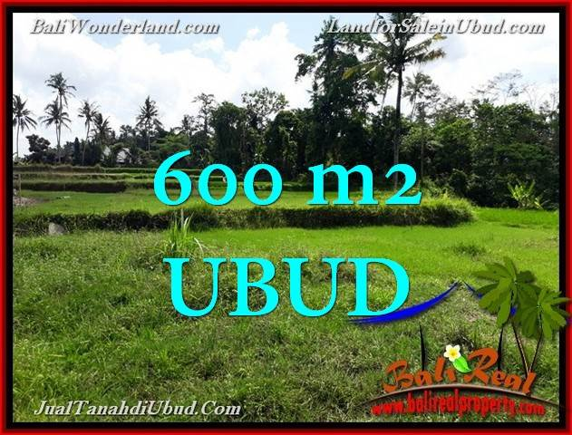 Magnificent PROPERTY 600 m2 LAND IN Ubud FOR SALE TJUB657