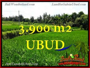 3,900 m2 LAND IN UBUD FOR SALE TJUB658