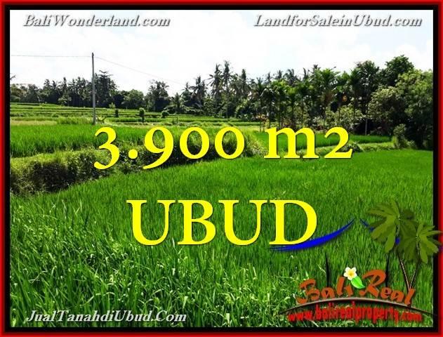 3,900 m2 LAND IN UBUD FOR SALE TJUB658