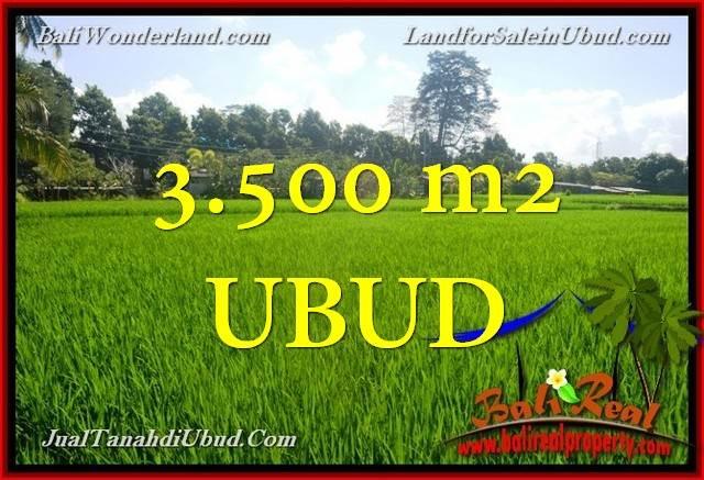 Exotic 3,500 m2 LAND SALE IN UBUD TJUB660