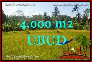 Beautiful LAND FOR SALE IN UBUD TJUB661