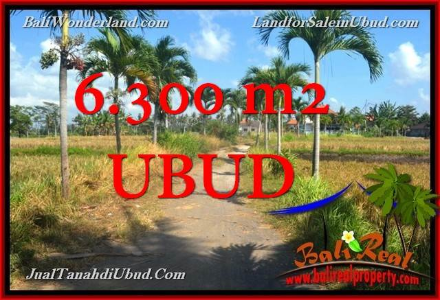 Magnificent Sentral Ubud BALI LAND FOR SALE TJUB662
