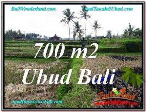 Exotic PROPERTY UBUD LAND FOR SALE TJUB666