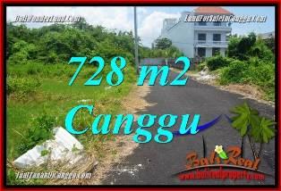 Affordable PROPERTY LAND IN CANGGU BRAWA BALI FOR SALE TJCG222