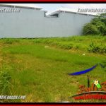 Affordable PROPERTY LAND FOR SALE IN CANGGU BRAWA BALI TJCG222