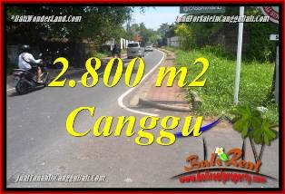 Exotic PROPERTY 2,800 m2 LAND SALE IN CANGGU BALI TJCG223