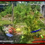 Exotic 400 m2 LAND IN CANGGU FOR SALE TJCG224