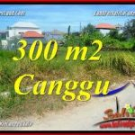 Exotic PROPERTY LAND IN CANGGU FOR SALE TJCG225