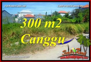 Exotic LAND SALE IN CANGGU BRAWA BALI TJCG225