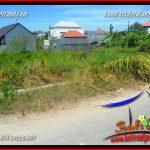 FOR SALE Affordable LAND IN CANGGU BRAWA BALI TJCG225