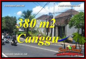 FOR SALE Beautiful PROPERTY LAND IN CANGGU BRAWA BALI TJCG226