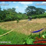 Beautiful CANGGU BRAWA BALI LAND FOR SALE TJCG226