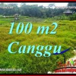 Beautiful PROPERTY 100 m2 LAND SALE IN CANGGU BRAWA TJCG227