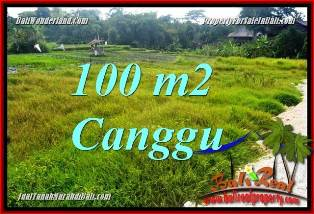 Magnificent PROPERTY CANGGU BALI 100 m2 LAND FOR SALE TJCG227