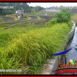 Beautiful 100 m2 LAND IN CANGGU BRAWA FOR SALE TJCG227