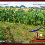 FOR SALE Magnificent PROPERTY 200 m2 LAND IN CANGGU BALI TJCG228