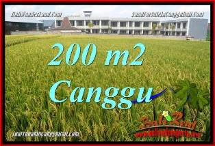 FOR SALE Exotic 200 m2 LAND IN CANGGU BALI TJCG229
