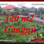 Beautiful PROPERTY 320 m2 LAND IN CANGGU PERERENAN BALI FOR SALE TJCG231