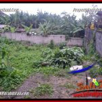 Affordable CANGGU PERERENAN LAND FOR SALE TJCG231