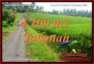 Magnificent 4,100 m2 LAND IN TABANAN SELEMADEG FOR SALE TJTB394