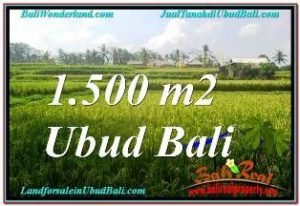 Affordable PROPERTY 1,500 m2 LAND FOR SALE IN UBUD TEGALALANG TJUB667
