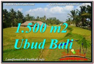FOR SALE Magnificent PROPERTY LAND IN UBUD TJUB668