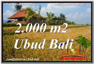 FOR SALE Beautiful PROPERTY 2,000 m2 LAND IN UBUD TEGALALANG TJUB669