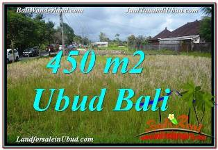 450 m2 LAND FOR SALE IN UBUD BALI TJUB671